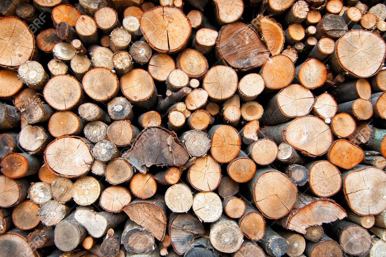 Prístrešok ktorý ochráni vaše drevo na ako má
