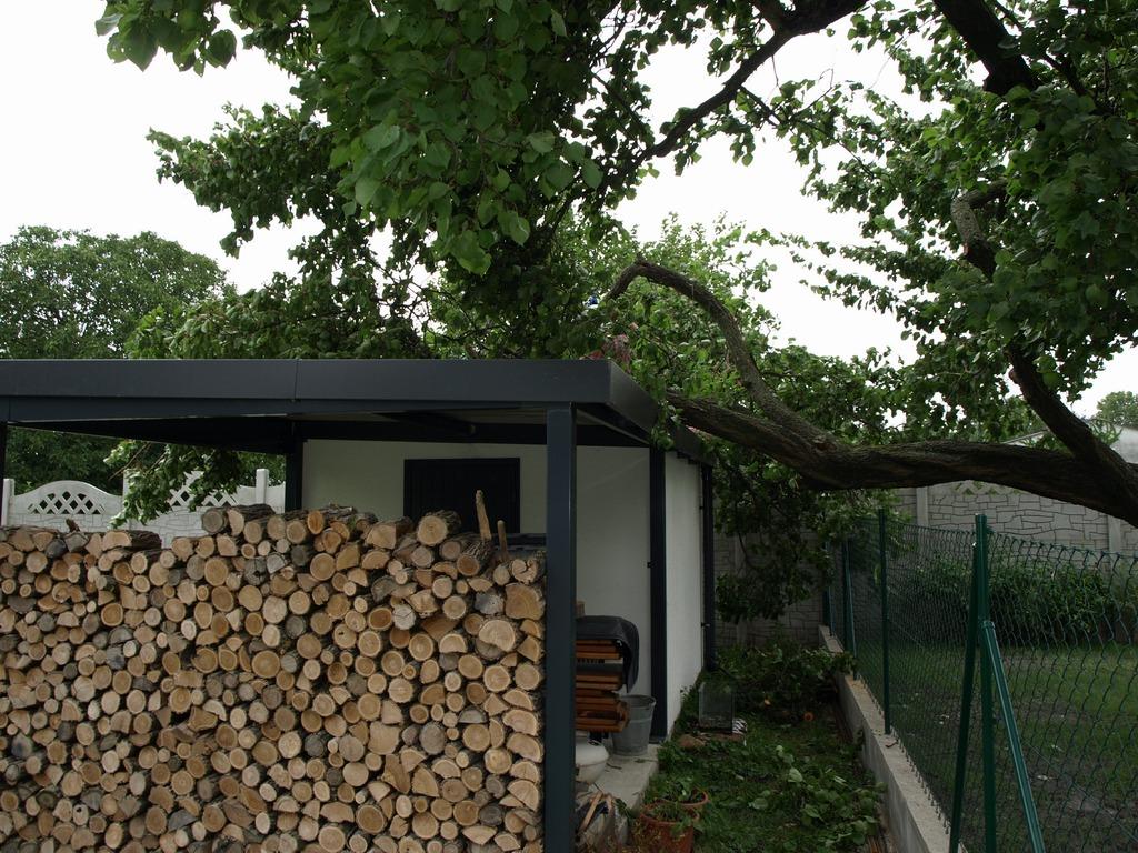 Padnutý strom na záhradnom domčeku
