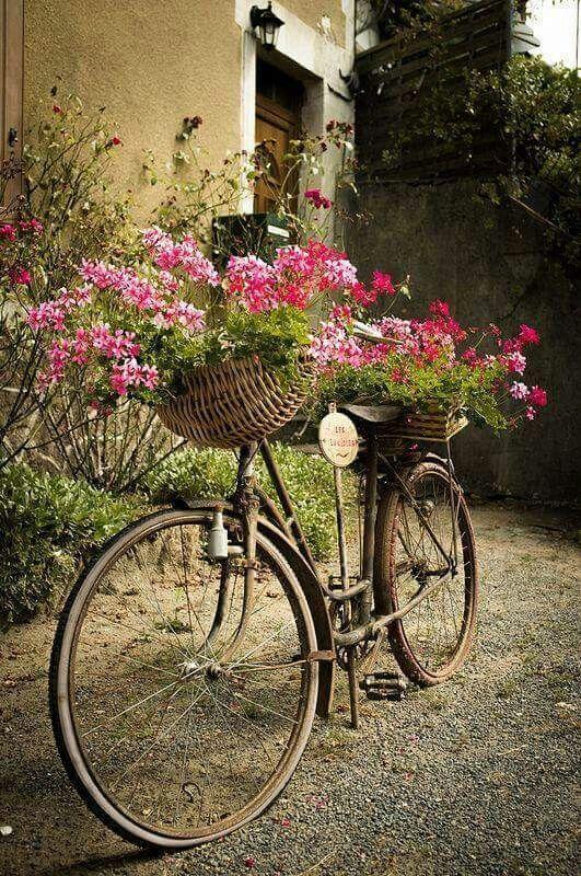 Starý bicykel s kvetináčom