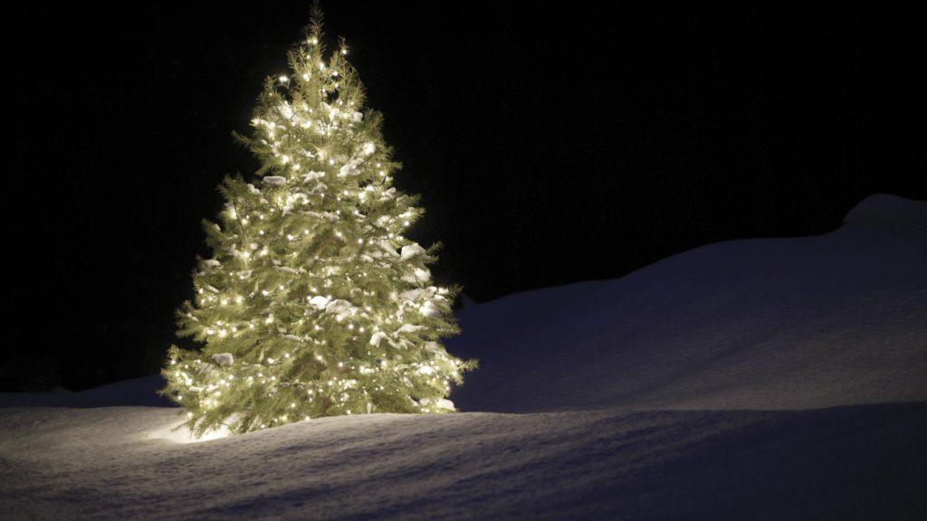 Zasvietený stromček v snehu