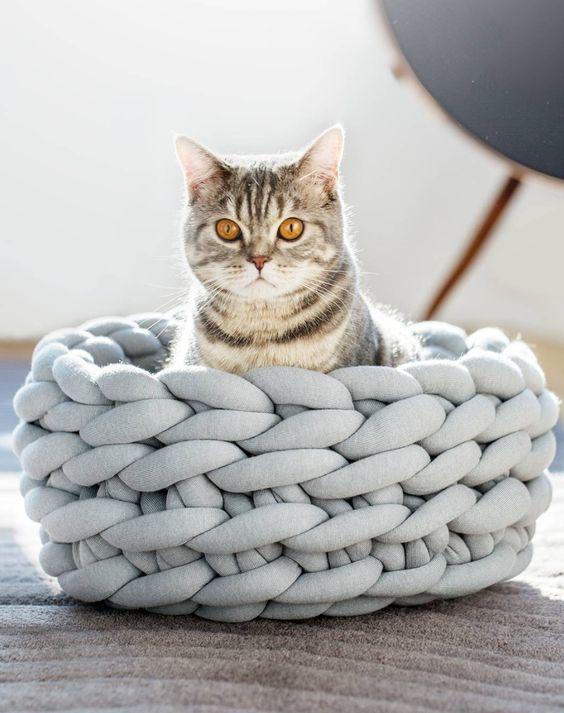 Pelech pre mačku