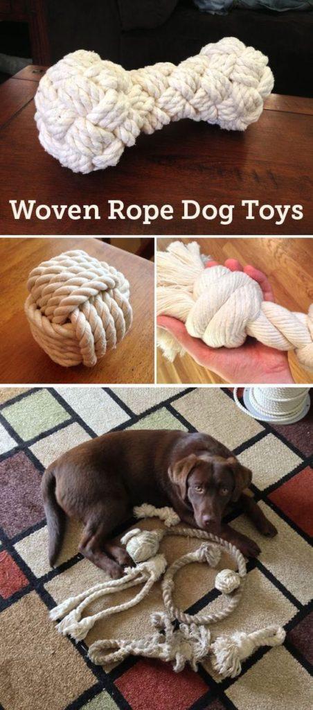 Kosť pre psa