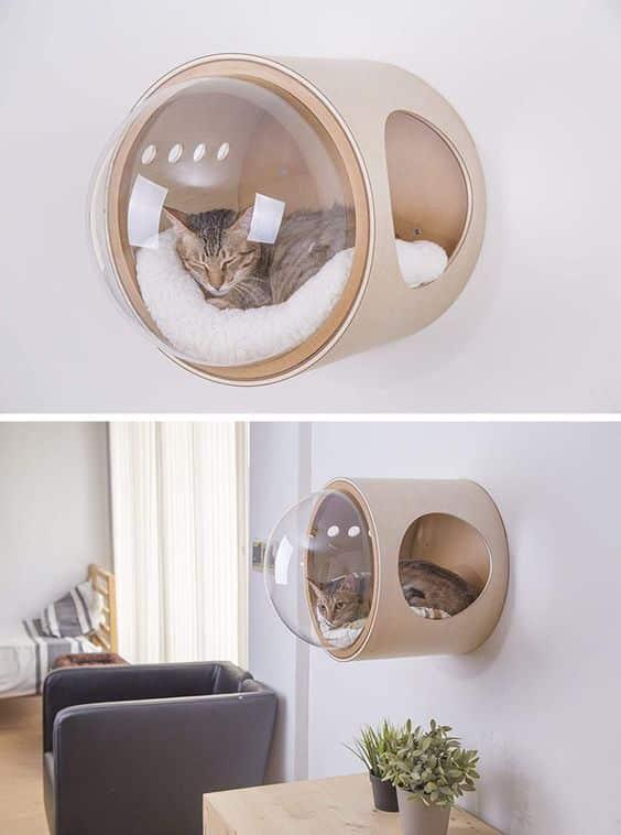 Pelech pre mačku na stene