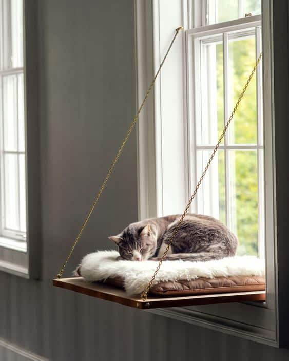 Mačka na závesnom pelechu
