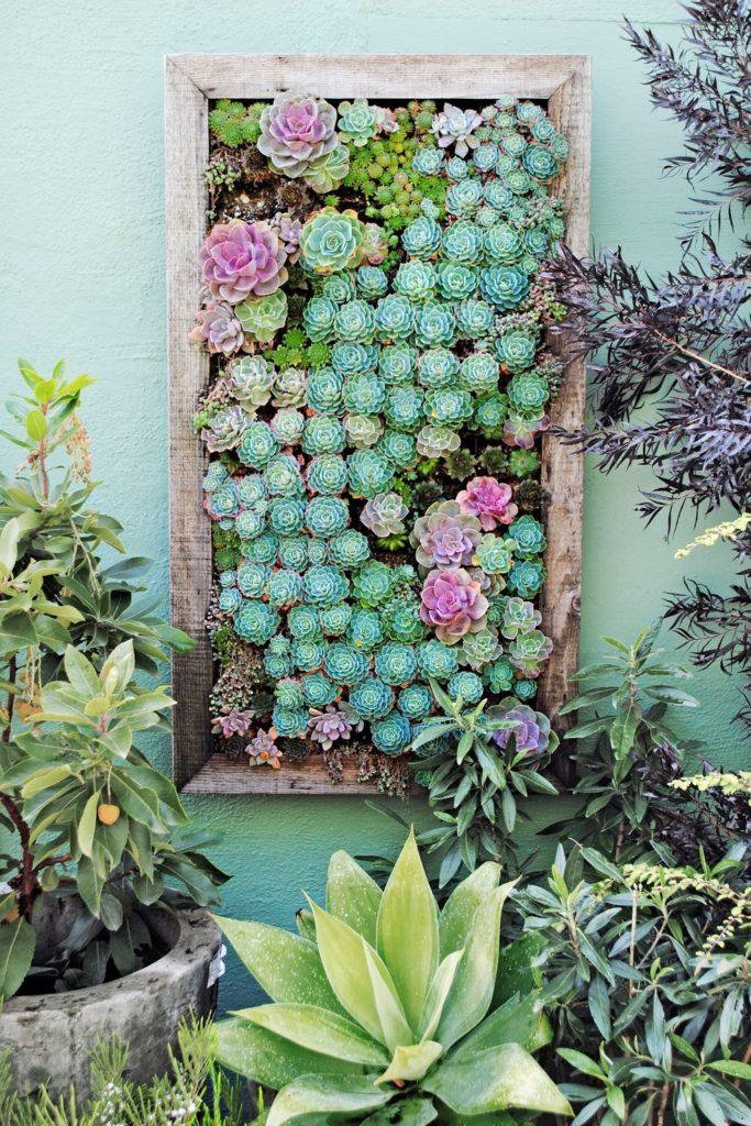 Zelený rastlinný obraz