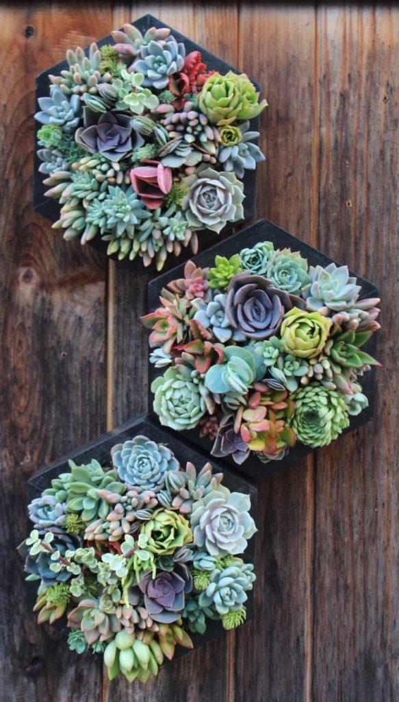 Farebné kvetiny zavesené na dreve