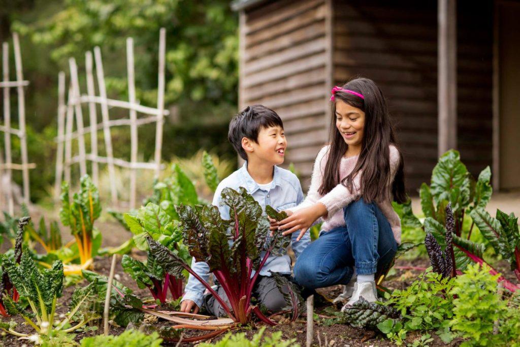 Deti v záhrade