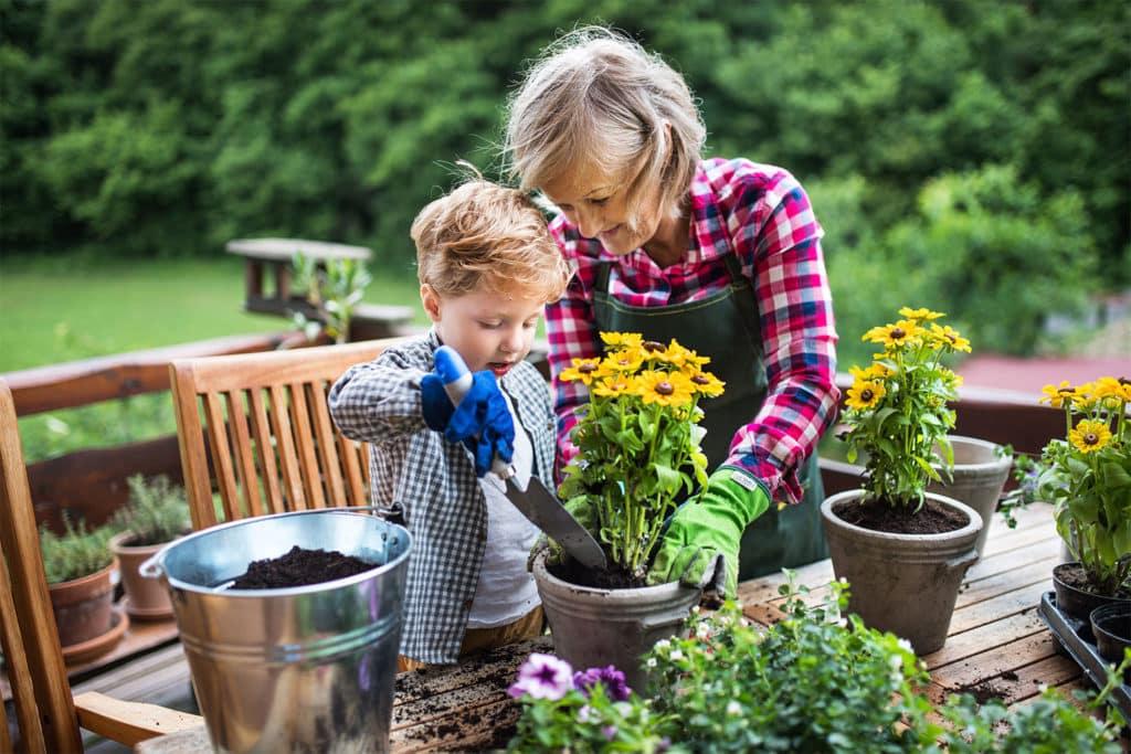 Babka s vnukom sa starajú o kvety
