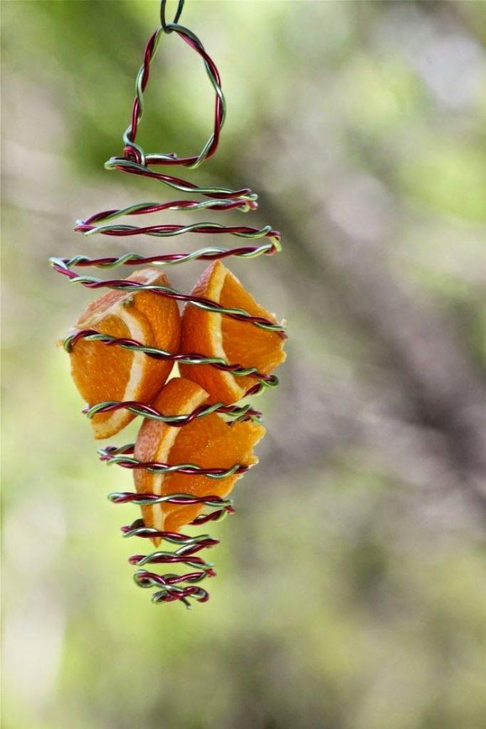 Zavesené pomaranče