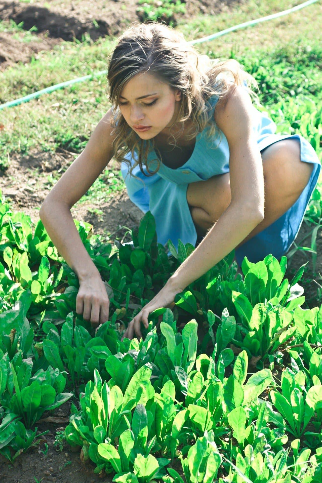 Žena pracuje v záhrade