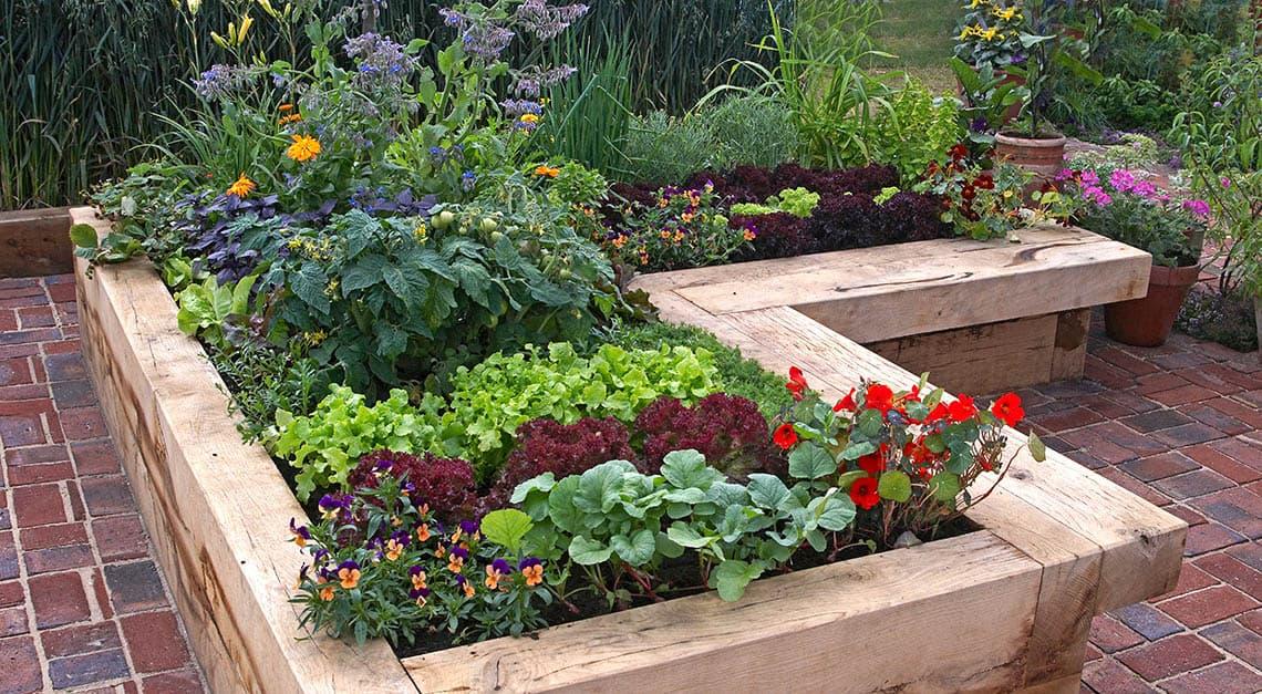 Drevený záhon na zeleninu
