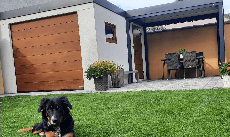 Záhradný domček so psíkom na záhrade