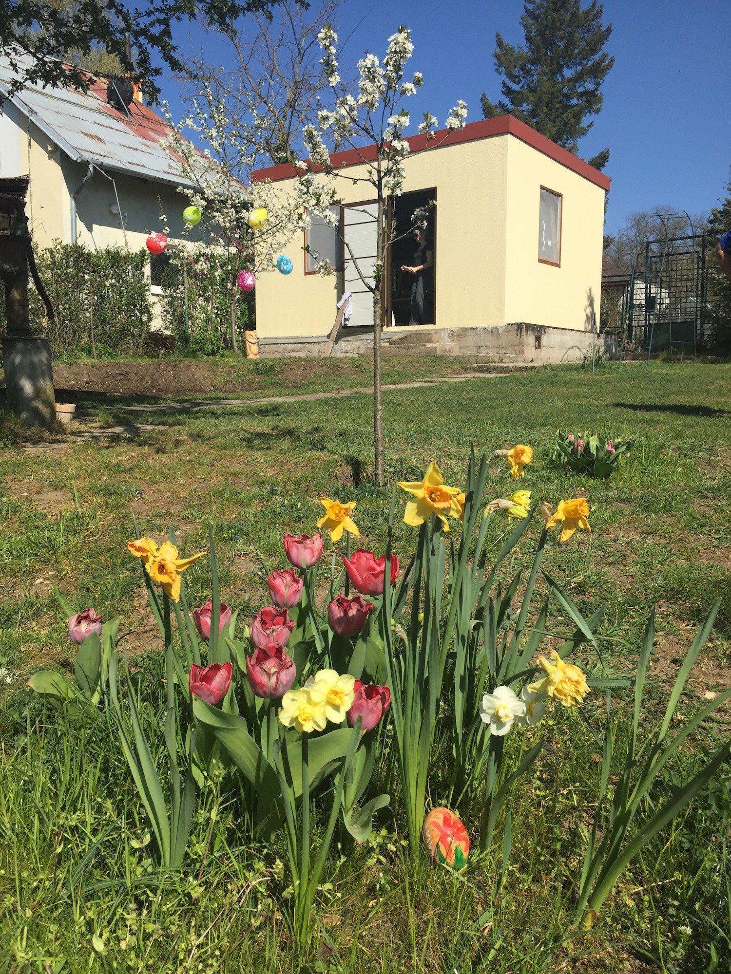 Farebné kvety pred záhradným domčekom