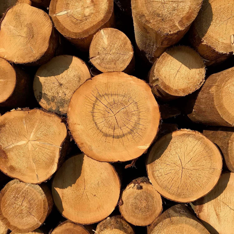 Odpílené drevo