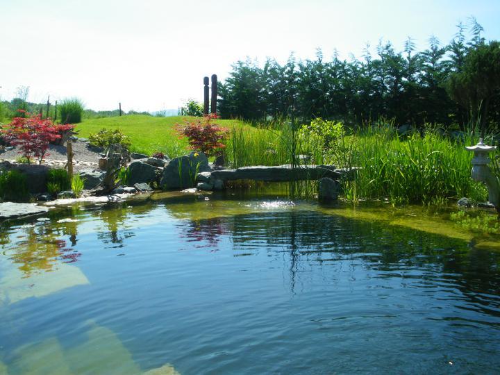Jazierko na kúpanie na záhrade