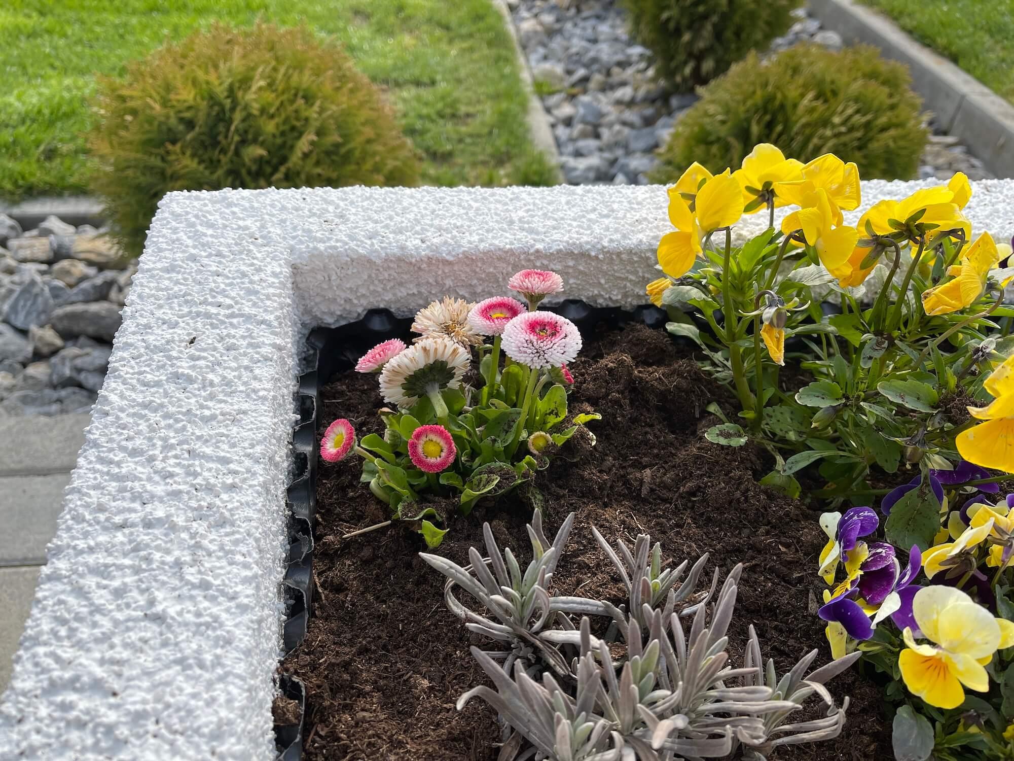 Kvety vo vyvýšenom záhone