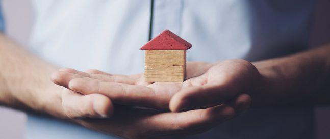 Drevený dom na dlani
