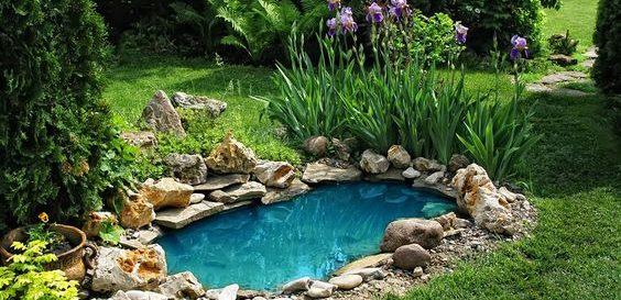 Malé záhradné jazierko