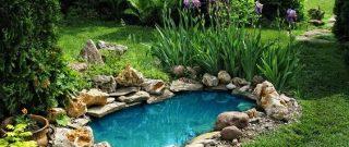 Kreatívne nápady na rekonštrukciu vašej záhrady