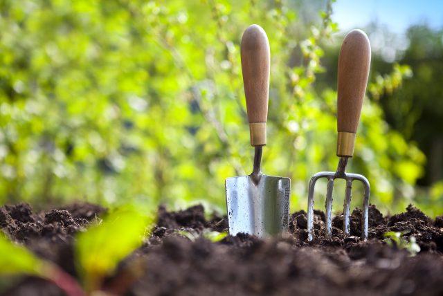 Hrable a lopatka zapichnuté v zemi