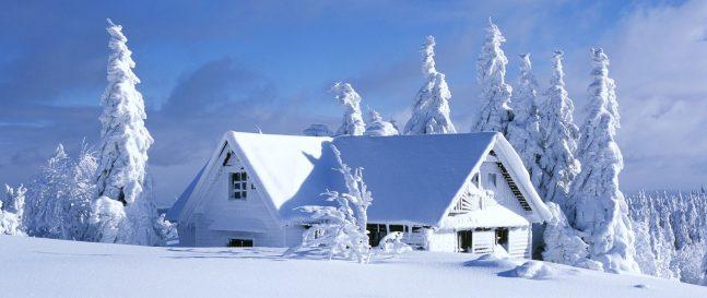 5 krokov, ako sa dostať do vášho záhradného domčeka už túto zimu