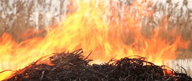 Ako predísť požiaru na vašej záhrade / v garáži / v záhradnom domčeku