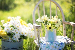 Nápady do záhrady: 5 vychytávok, ktoré musíte vyskúšať!