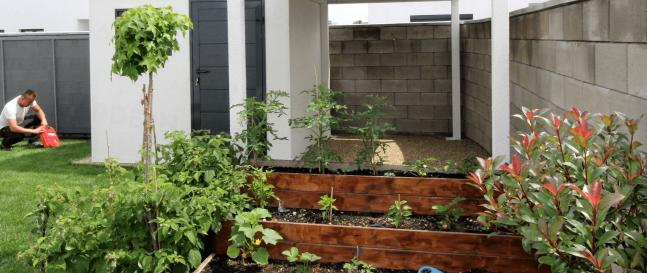 Vyvýšený záhon pri záhradnom domčeku